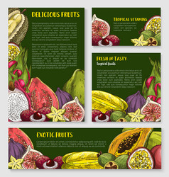 exotic tropical fruit banner poster template set vector image