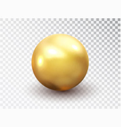 golden sphere isolated on transparent background vector image