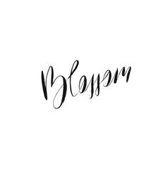 hand drawn ink graphic handwritten blossom vector image