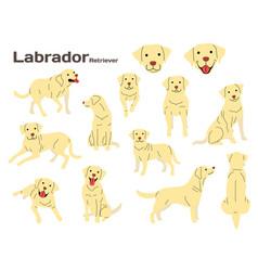 Labrador in action vector