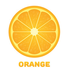 Orange citrus fruit healthy vegan food vector