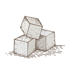 sugar cube hand drawing vector image