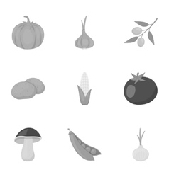 Vegetables set icons in monochrome style Big vector image