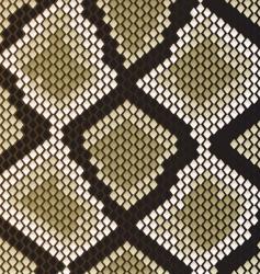snake skin vector image