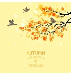 Branches with autumn leaves vector
