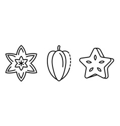 carambola icons set outline style vector image