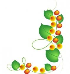 Fruit vine vector