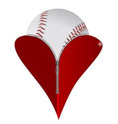 Love baseball vector
