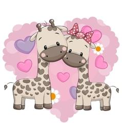 Two cute giraffes vector image