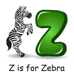 animals alphabet z is for zebra vector image