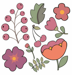 Beautiful floral set elements vector