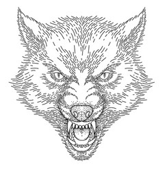head roaring wolf vector image
