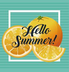 Hello summer orange fresh fruit poster vector