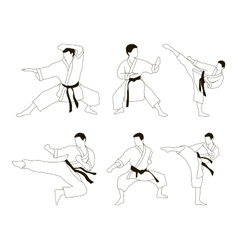 Karate icon set vector image