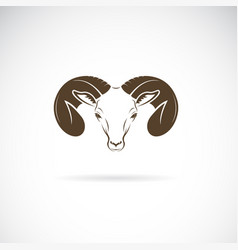 ram head or mountain sheep design on white vector image