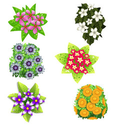 Set of flowers With Leaves vector image