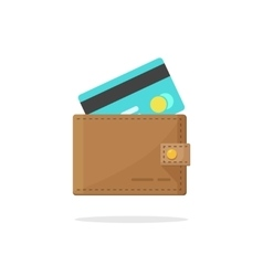 Wallet credit card isolated vector image