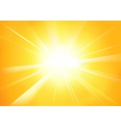 Sunshine vector image vector image