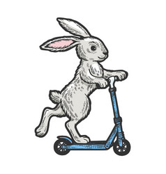 bunny riding on scooter color sketch vector image