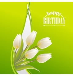 White tulips on a green card for birthday vector