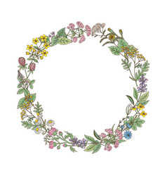 wreath from hand drawn herbs and flowers vector image vector image