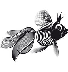 skeleton goldfish vector image vector image