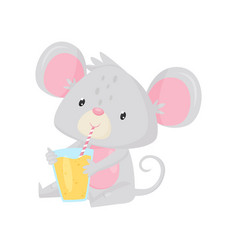 cute little mouse sitting and drinking tasty vector image