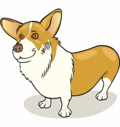 Dog breeds Pembroke welsh corgi vector
