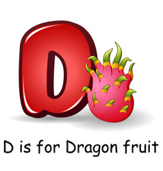 Fruits alphabet d is for dragon vector