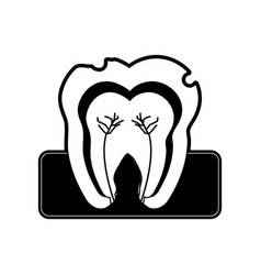 Molar tooth inside dentistry icon image vector