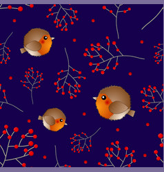 red robin bird and berry on navy blue background vector image