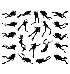 silhouettes divers vector image