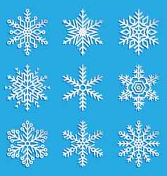 snowflakes set elegant vector image