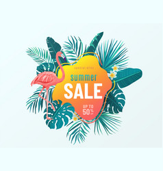 summer sale banner background with bright vector image