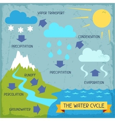 The water cycle Poster with nature infographics in vector