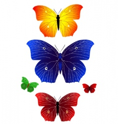 bright butterflies vector image vector image