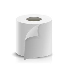 realistic paper roll template blank white vector image