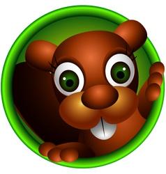 cute squirrel head cartoon vector image vector image