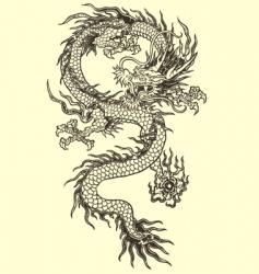 dragon vector vector image vector image