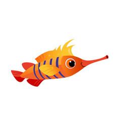 orange longnose fish sea tropical aquarium fish vector image vector image