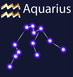 constellation aquarius with stars in night sky vector image