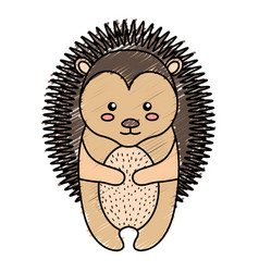 cute and tender porcupine vector image