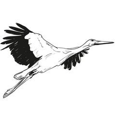 Lying white stork vector