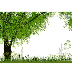 Nature background vector