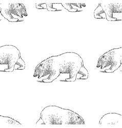 Seamless pattern sketches a polar bear cub vector