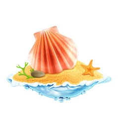Seashell in the sand vector