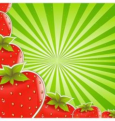 Strawberry And Green Sunburst vector image