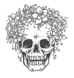 Dead skull with rose flowers sketch vector image vector image