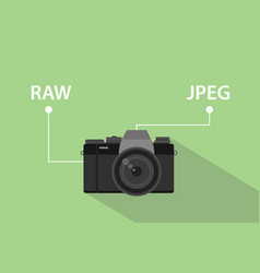 comparing format file of camera between raw format vector image