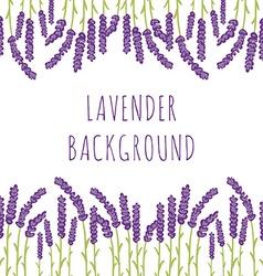 Lavender floral background vector image